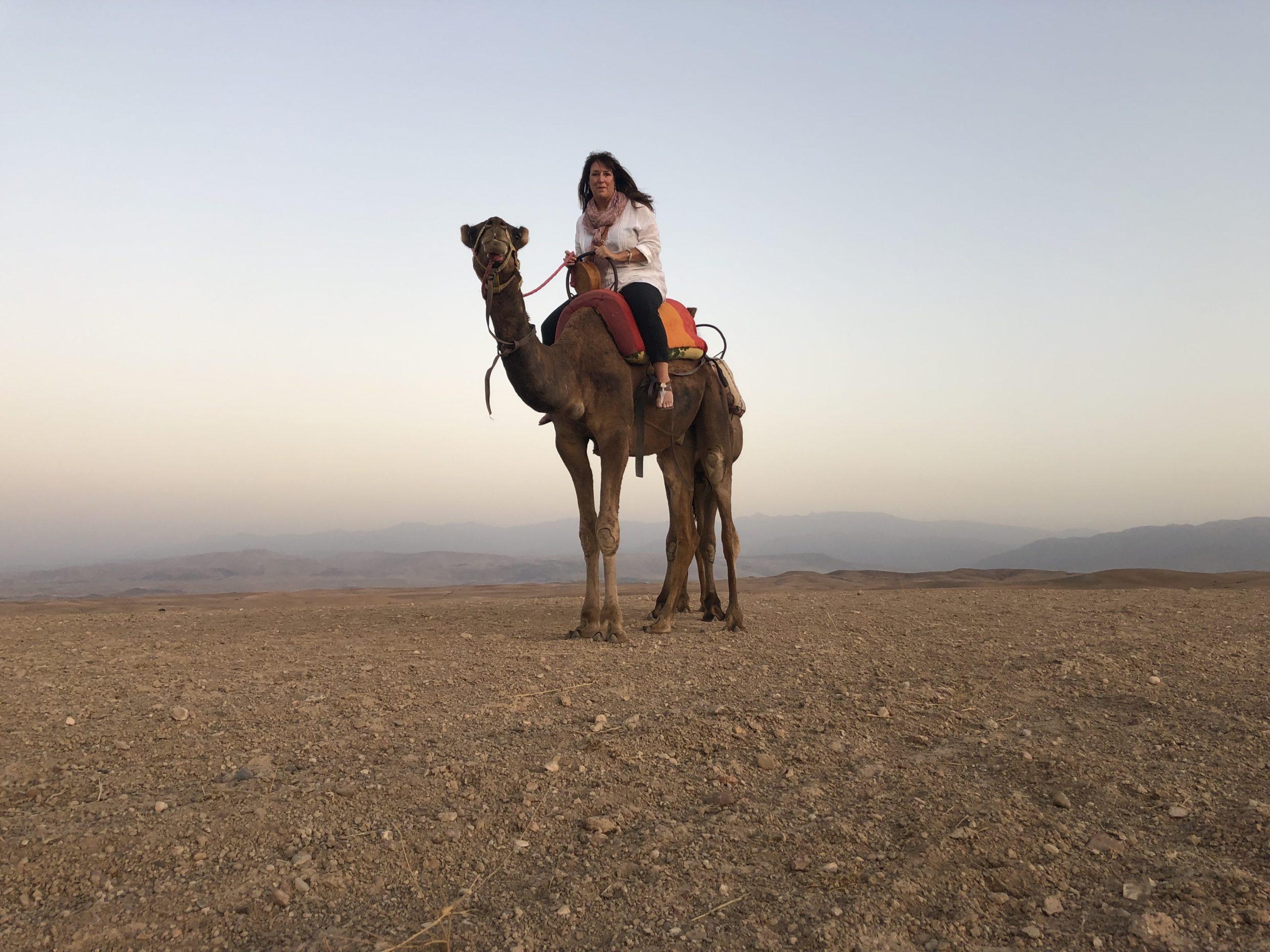 Camel trekking, Agafay Desert, Morocco, Africa