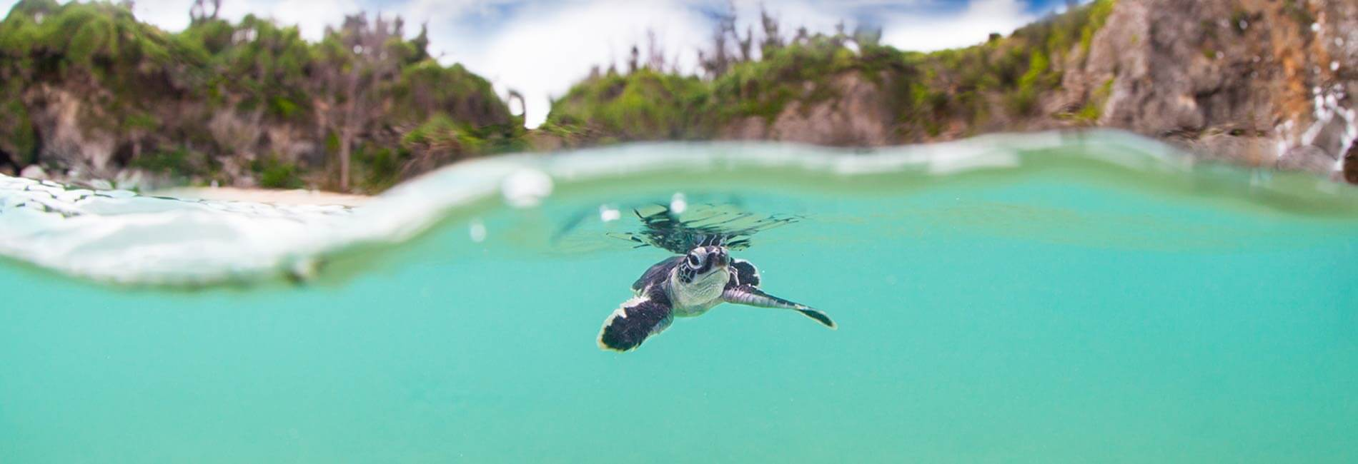 mexico-beach-holiday-luxury